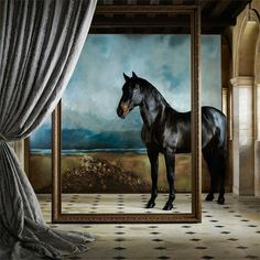 Zoffany - Luxury Fabric and Wallpaper Design   Products   British/UK Fabric and Wallpapers   Holkham Bay (ZKEM312663)   Kempshott Wallcoverings