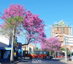 Asuncion,Paraguay. Hermosa foto!!