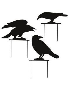 Black Crows, Set of 3