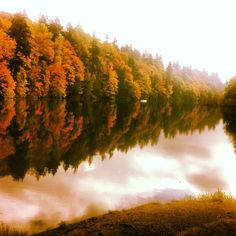 Pacific Northwest - Beautiful Lake and Trees :)