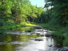 CANADA | Brisley Stream, part of the Oromocto Watershed Region, New Brunswick, Canada