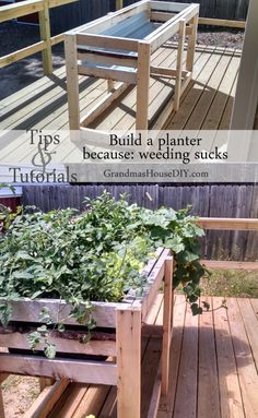 How to build a counter height garden planter for easy weeding and watering, outdoor diy, cheap inexpensive gardening back yard outside