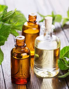 Cool Breeze Peppermint Foot Soak. Peppermint oil is one of the world's oldest medicinal herbs and research has demonstrated that essential oil of peppermint has a relaxing, uplifting effect.
