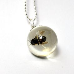 Wasp necklace!  Call A1 Bee Specialists in Bloomfield Hills, MI today at (248) 467-4849 to schedule an appointment if you've got a stinging insect problem around your house or place of business! You can also visit www.a1beespecialists.com!