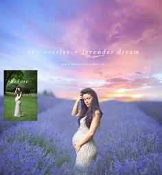 Lavender Dream | Digital Photography Backdrop