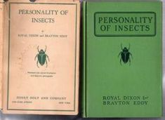 personality of insects