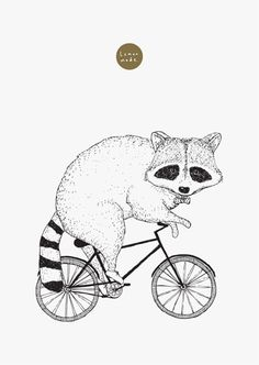 animals on bikes by Laura Sellman