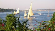 Fellucas on the Nile Sailing Ships, Egypt, Boat, Landscape, World, Photography, Travel, Dinghy, Scenery