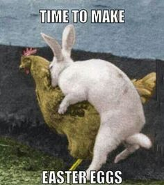 TIME TO MAKE EASTER EGGS! ;D