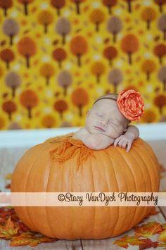In a pumpkin