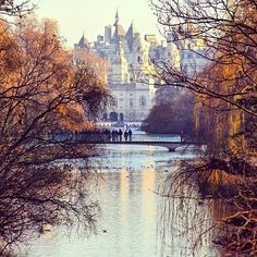 Follow the Royal London Walk for the best of greenery and luxury in central London. Beginning at the picturesque St James's Park, the walk offers the royal treatment, leading you along a path from St James's Palace to Kensington Palace, and more gorgeous gardens and galleries along the way.