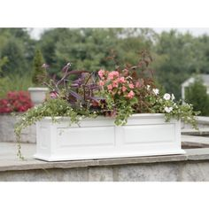 """Target Savannah Window Box.  Wood with plastic liner, 24"""", 30"""", or 36"""".  All priced in the $70's."""