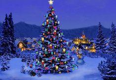 Karácsonyi képek – Google Kereső Christmas Quiz, Christmas Scenery, Outdoor Christmas, Christmas Lights, Christmas Trees, Christmas Background Desktop, Christmas Desktop Wallpaper, Christmas Profile Pictures, Snow