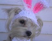Dog Easter Bunny Ears, Bunny Hat For Cat, Pet Bunny Ears, Crocheted Bunny Ears Hat For Cat, Easter Cat Hat