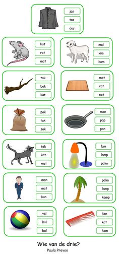 Wie van de drie? Kies het correcte woord. Grade R Worksheets, Worksheets For Kids, Activities For Kids, Primary School, Pre School, Learn Dutch, Dutch Language, Speech Language Therapy, Language Activities