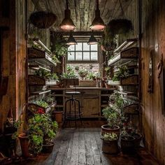 The Potting Shed: A Green Oasis in Alexandria This restaurant in Alexandria, Australia, is a green oasis. Plants adorn every wall and nook while beautiful reclaimed wood furniture makes for a cozy interior.The Potting Shed doesn't only serve amazing food, The Grounds Of Alexandria, Alexandria Sydney, Witch Cottage, Potting Sheds, Potting Benches, Shed Plans, Barn Plans, Garage Plans, Hanging Plants