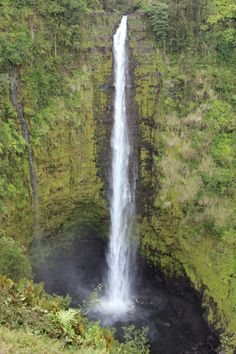 One of the World's Largest Waterfalls in Hawaii