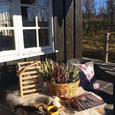 Happy friday 😍☀️Etter fin fjelltur var det herlig å lande her , med kaffikoppen ☕️🍩-- strålande sol --☀️☀️💙og blikkstille 🍂😍