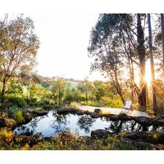 Landscape designer Sam Cox has created a native bush garden that emulates its natural surroundings on a 6.5ha property just 30 minutes from the CBD.