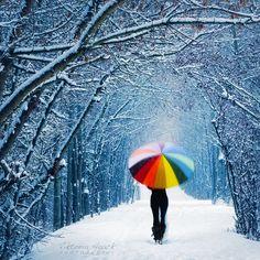 Rainbow umbrella in the snow Colorful Umbrellas, I Love Winter, Winter Walk, Winter Fun, Winter Snow, Winter White, Parasols, Under My Umbrella, Snow Angels