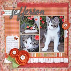 like the 3 photo spread (not the cat :), love the ruffle and handmade flowers
