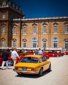 In a sea of big red Ferraris, be a Alfa Romeo Junior, Alfa Romeo Gta, Maserati, Lamborghini, Ferrari, Car Manufacturers, Turin, Cars Motorcycles, Classic Cars