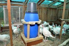 Бункерная кормушка из бочки с кормовым столом. Птицеводческое хозяйство Маруся и Медведь - YouTube