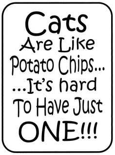 True... Until you have to clean s litter box:-/