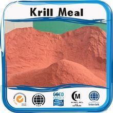 Vegetarian DHA Algae Oil Soft capsule wholesale exporter /contract manufacturer Krill Oil, Vegetarian, Meals, Meal, Food, Nutrition, Diet