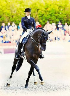 Best Kristina Sprehe And Desperados Ideas 10 Articles And Images Curated On Pinterest Dressage Horses Equestrian