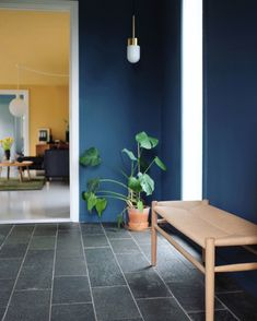 The blue entrance Montana Furniture, Melbourne Apartment, Hallway Inspiration, Foyer Design, Hemnes, Lush Green, Green Plants, Dining Table, Instagram