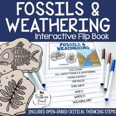 This engaging Fossil