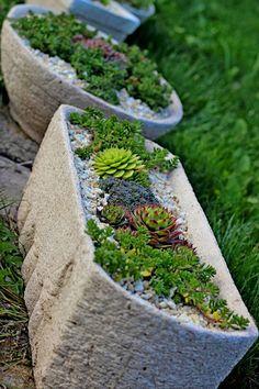 Lenka Tokarska – Google+ Stepping Stones, Succulents, Gardening, Google, Outdoor Decor, Home Decor, Stair Risers, Decoration Home, Room Decor