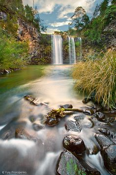 Dangar Falls, Dorrigo, New South Wales, Australia