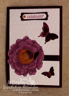 =A Crafty Cat; Stampin' Up! Blendibilities