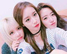 T-ara JiYeon, EunJung, and Qri posed for cute SelCa pictures ~ T-ara World ~ 티아라