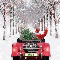 A Winter Drive' Fun Christmas Cards - Christmas Connections Driving Home For Christmas, Christmas Red Truck, Christmas Scenes, Christmas Pictures, Christmas Home, Christmas Holidays, Christmas Decorations, Merry Christmas, Father Christmas
