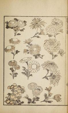 Japanese Art Prints, Japanese Drawings, Japanese Painting, Japanese Artists, Chinese Painting, Chinese Art, Japanese Bird, Japanese Flowers, Hokusai Paintings