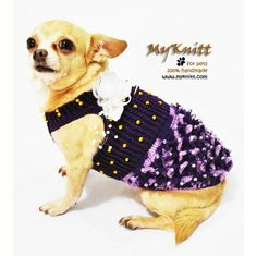 This month favorite from Myknitt designer dog clothes. Purple fancy handmade crocbeted dog dresses with golden pearls and white roses. Ready to be ordered at www.myknitt.com #myknitt #dogdresses #chihuahua #teacupchihuahua #teacupdogs #puppies #celebritydogs #handmade #diy #crochet