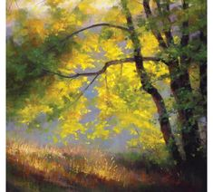 Painting Sunlight and Shadow with Pastels. Master the art of creating lifelike landscapes & objects in pastel by using these sunlight and shadow techniques.