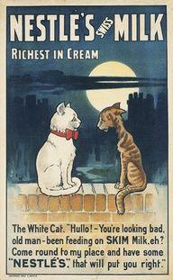 William True, poster for Nestlé Swiss Milk, 1901 or earlier. I Love Cats, Crazy Cats, Cool Cats, Pub Vintage, Vintage Labels, Vintage Food, Vintage Signs, Poster Retro, Vintage Posters