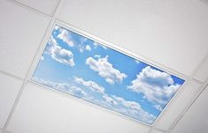 Octo Lights Fluorescent Light Covers 8x8 Flexible Ceiling Light Diffuser Panels Decorative Clouds for Classrooms and Offices 8 fluorescent light covers Sky Ceiling, Ceiling Panels, Ceiling Lights, Fluorescent Light Covers, Led Fluorescent, Lighting System, Shop Lighting, Light Diffuser Panel, Light Fixture Parts
