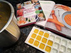 Der erste Brei für eure Liebsten, sooo einfach, und man weiß was drin ist... In diesem Buch bekommt ihr alle Infos wie ihr mit Beikost startet und nebenbei noch über 80 Rezeptideen 😉 Toddler Finger Foods, Portable Snacks, Baby Recipes, Second Child, Baby & Toddler