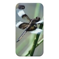 >>>Low Price Guarantee          	Dragonfly Iphone case iPhone 4/4S Cases           	Dragonfly Iphone case iPhone 4/4S Cases In our offer link above you will seeShopping          	Dragonfly Iphone case iPhone 4/4S Cases lowest price Fast Shipping and save your money Now!!...Cleck link More >>> http://www.zazzle.com/dragonfly_iphone_case_iphone_4_4s_cases-256085604533836979?rf=238627982471231924&zbar=1&tc=terrest