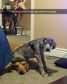 40 Funny Pictures for Today (Click on pic to see the other 39)