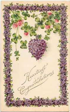 Pretty Heartiest Congratulations Vintage 1911 Postcard  Violets.uk.picclick.com
