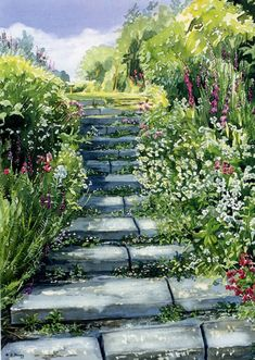 Garden Steps - watercolour by Dorothy Pavey