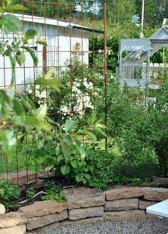 Forest Garden, Garden Inspiration, Garden Plants, Garden Design, Pergola, Yard, Floral, Hem, West Side