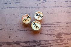 Handmade Dragonfly Glass Magnets Set of 3 by crookedfencegifts, $4.75