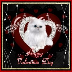 Happy Valentines Day Quotes Humor, Valentines Day Cartoons, Valentines Gif, Happy Valentines Day Images, Valentines Day For Him, Valentine Crafts, Valentine's Day Quotes, Laugh Quotes, Happy Holidays Greetings